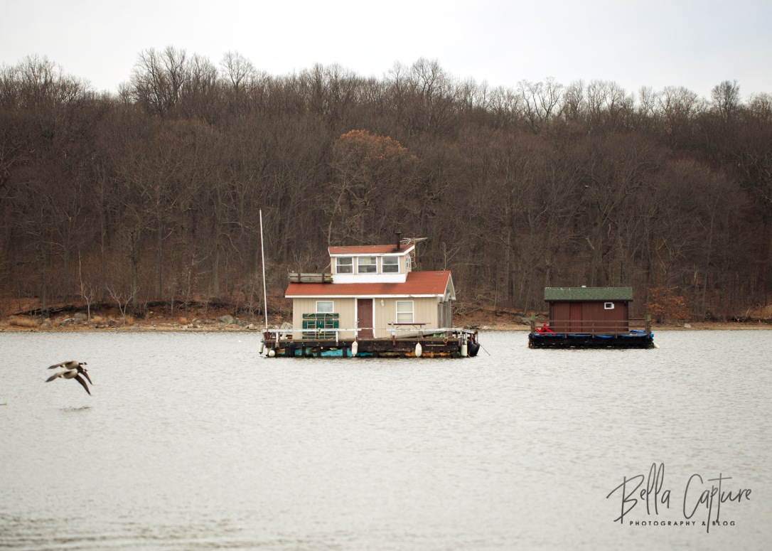 Glen Island 2